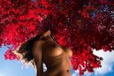 Web_red_maple_bust_60x90'_2015_129_0